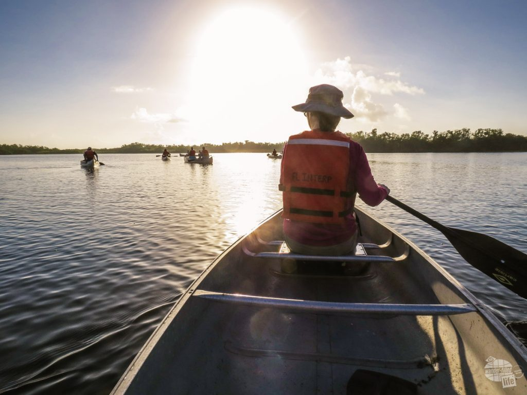 Bonnie paddling out on Nine Mile Pond, one of the coolest things to do in the Everglades.