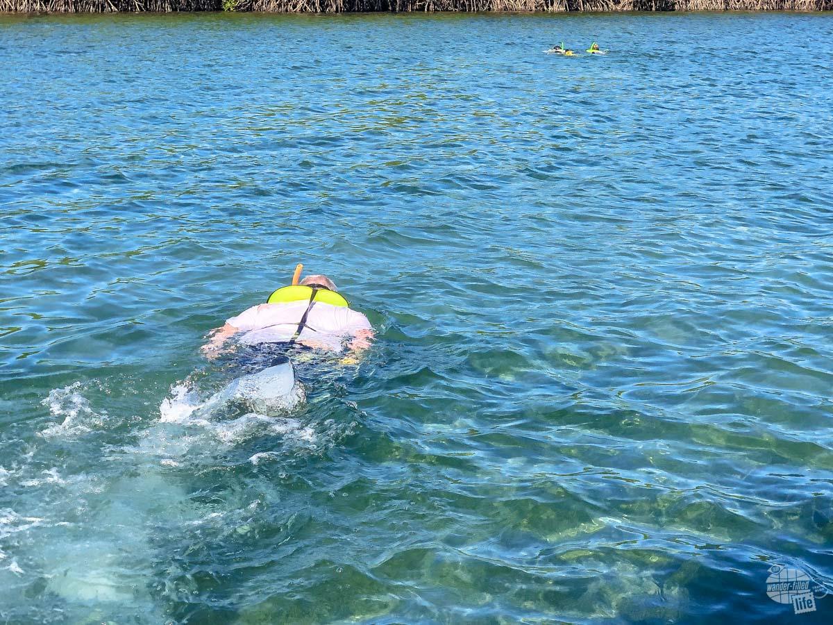 Grant snorkeling at Biscayne National Park.
