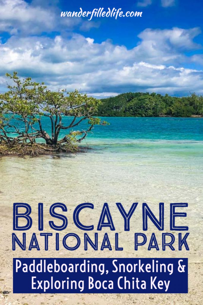 Our review of two Biscayne National Park tours offered by the Biscayne National Park Institute. You'll find plenty of options and fun for everyone!