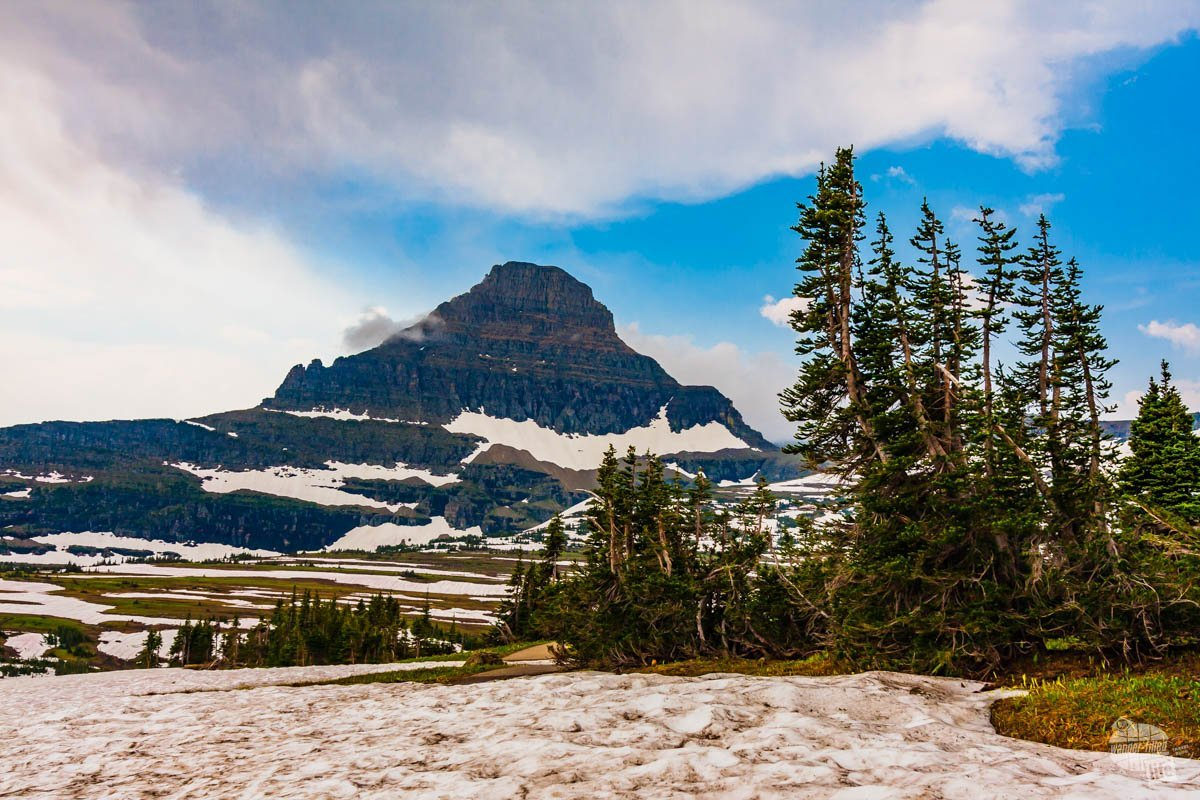 Getting around in the national parks often means you have to take a car so you can see places like Logan Pass in Glacier National Park.