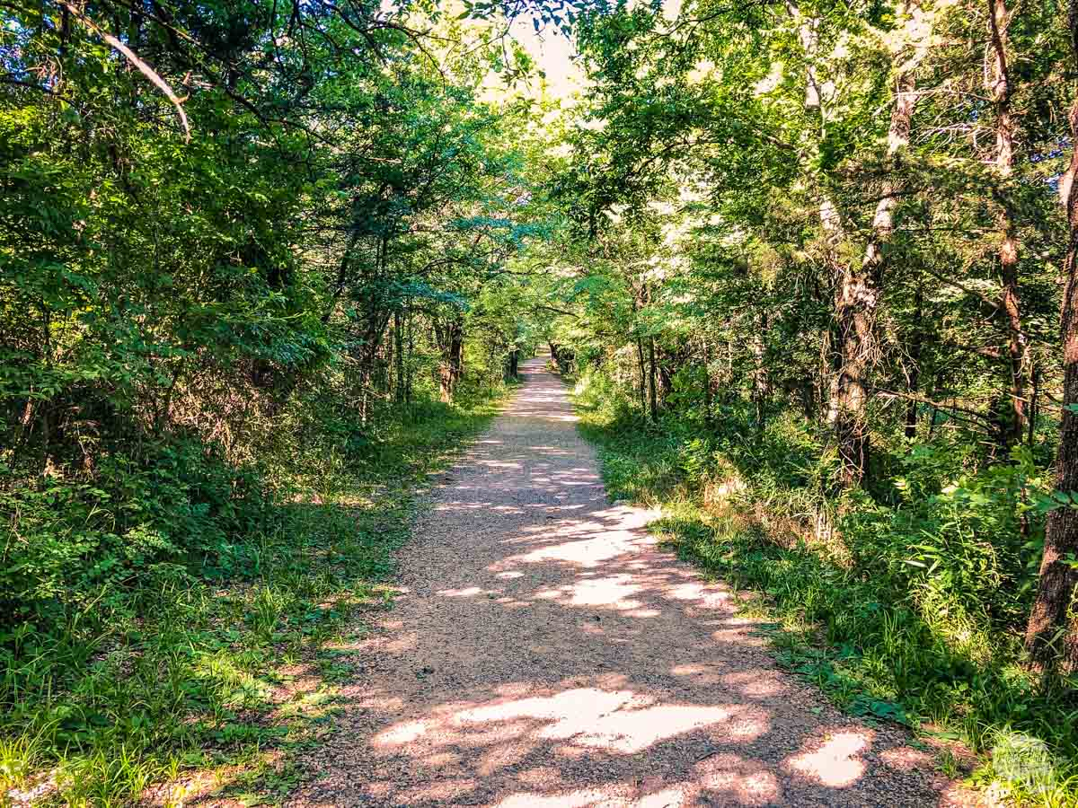 The wide and shaded Bison Pasture Trail in Chickasaw National Recreation Area.