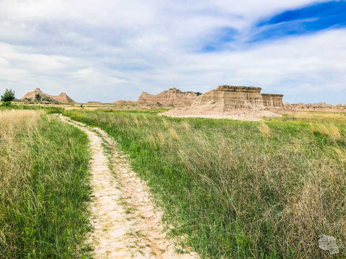 The Castle Trail winding through the grass with badlands in the distance.