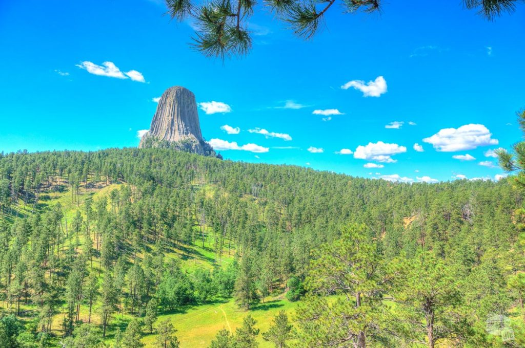 Devils Tower NM is one of many things to do near Custer State Park.