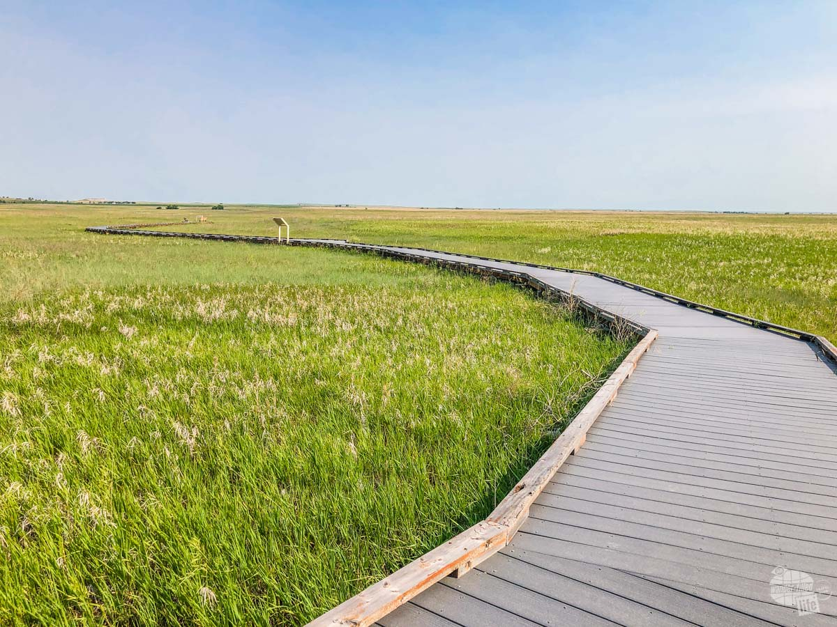 The Prairie Wind Overlook is a nice boardwalk allowing visitors to see the prairie up close without worring about rattlesnakes.