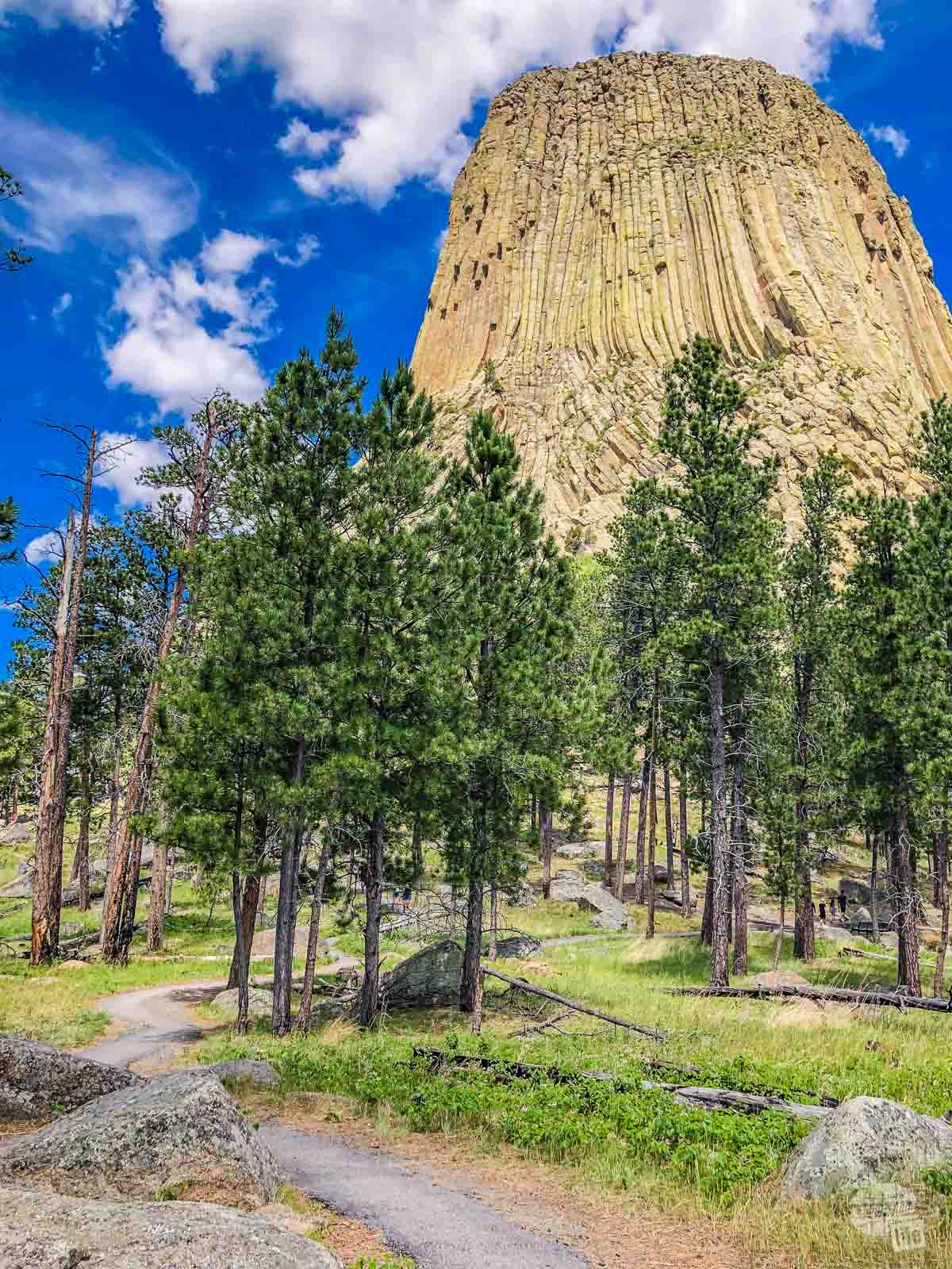 Devils Tower with the Tower Trail in the foreground.