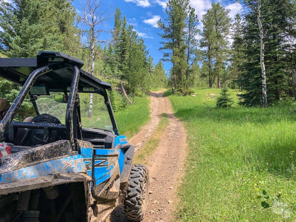 The remote ATV trail through the Black Hills National Forest.
