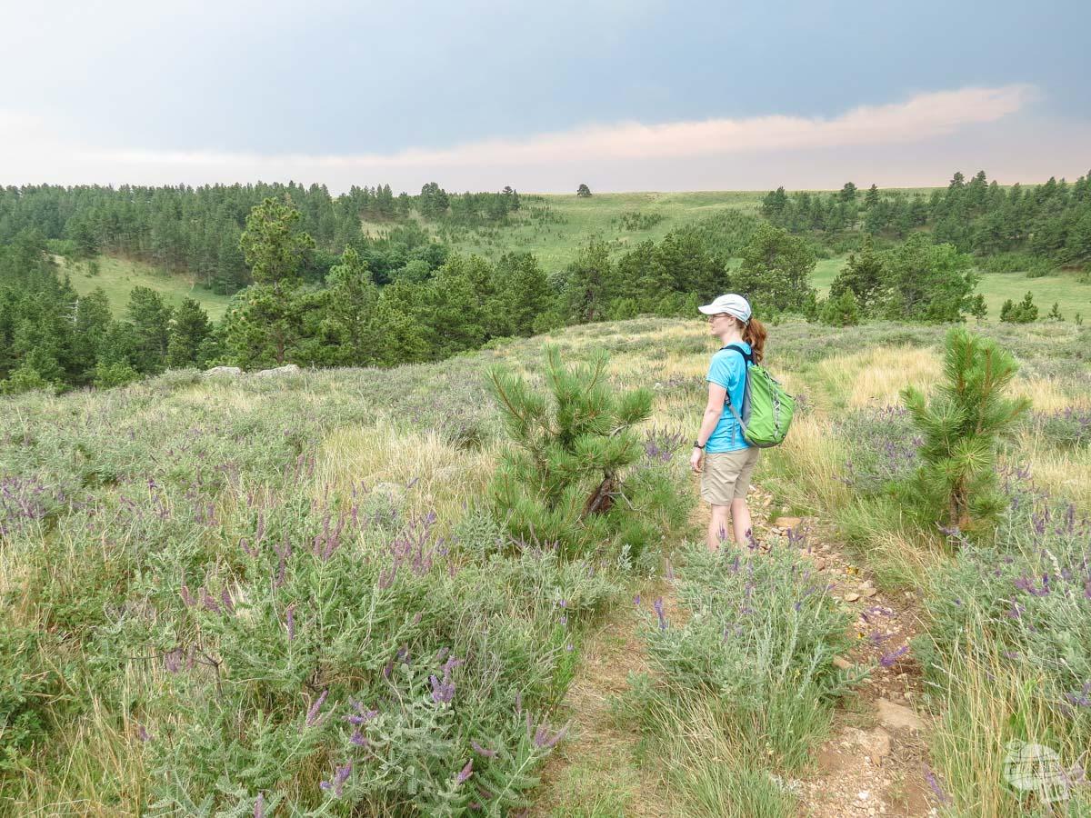 Bonnie hiking the Prairie Trail in Custer State Park.