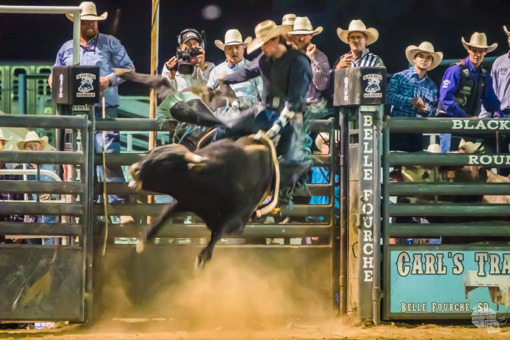 The Black Hills Roundup in Belle Fourche is a great rodeo in the Black Hills.