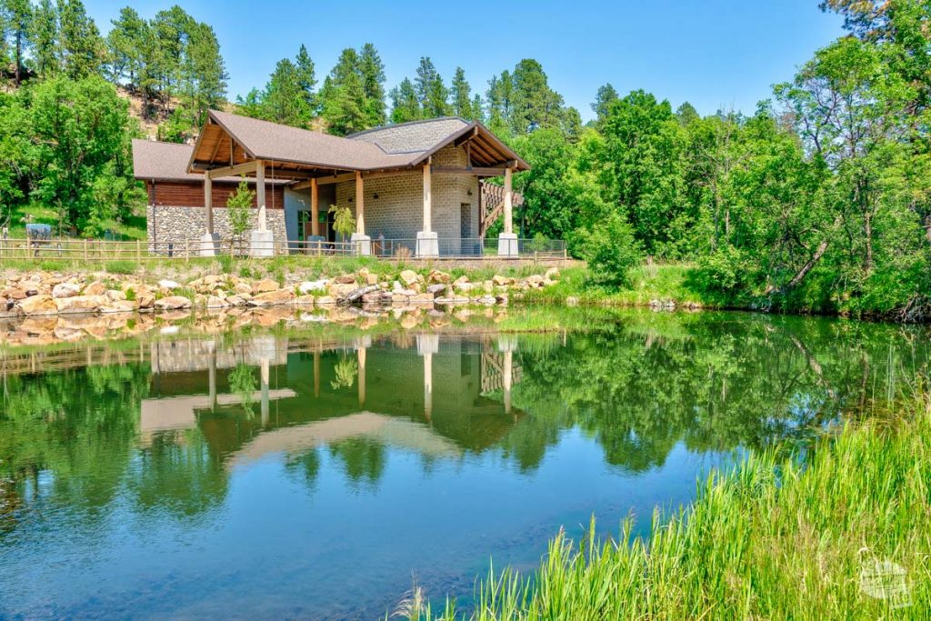 A stop at the visitor center is one of our top things to do in Custer State Park.