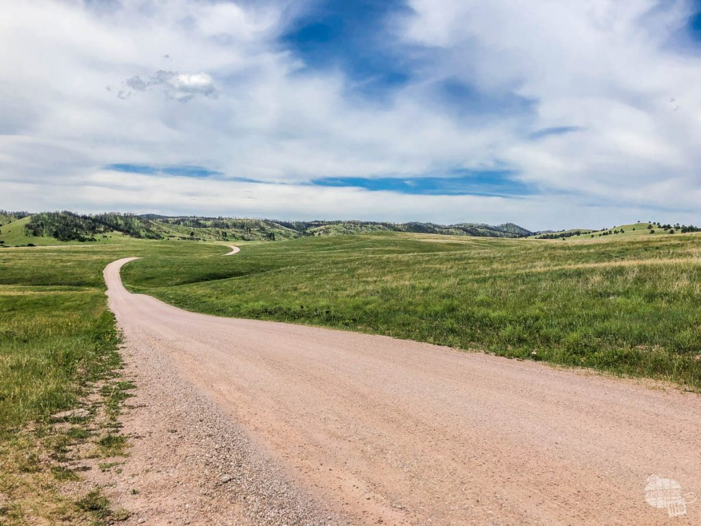 One of the dirt roads in Custer State Park