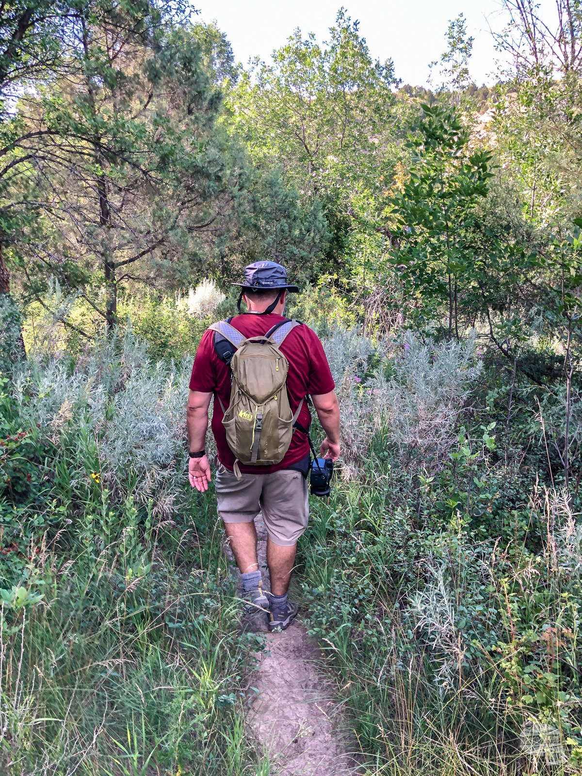 Grant hiking through thicker brush on the Caprock Coulee Trail.