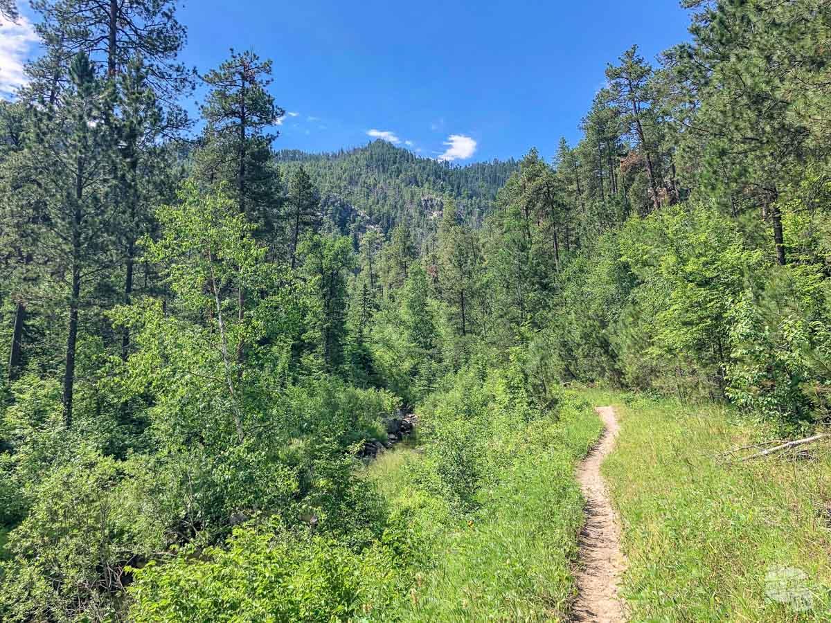 Iron Creek Trail