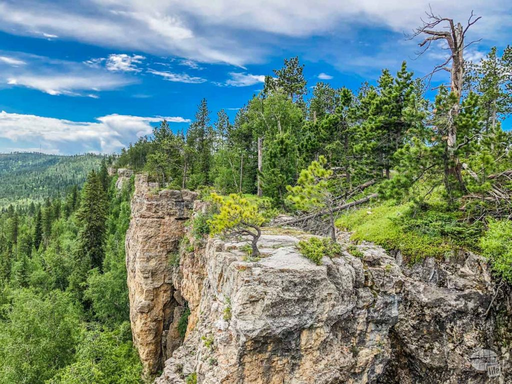 There are tons of scenic views to find when ATVing in the Black Hills.