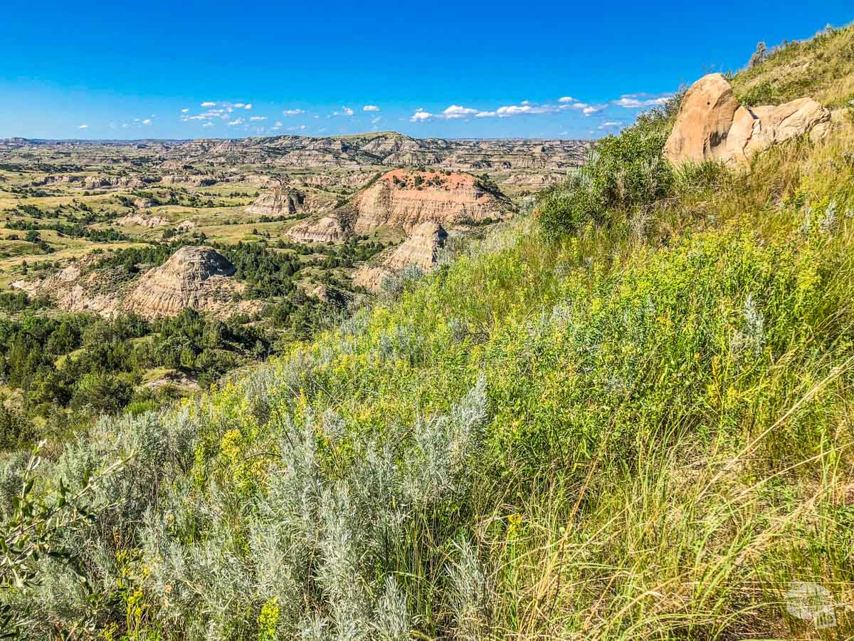Along the Painted Canyon Nature Trail in the South Unit of Theodore Roosevelt National Park.