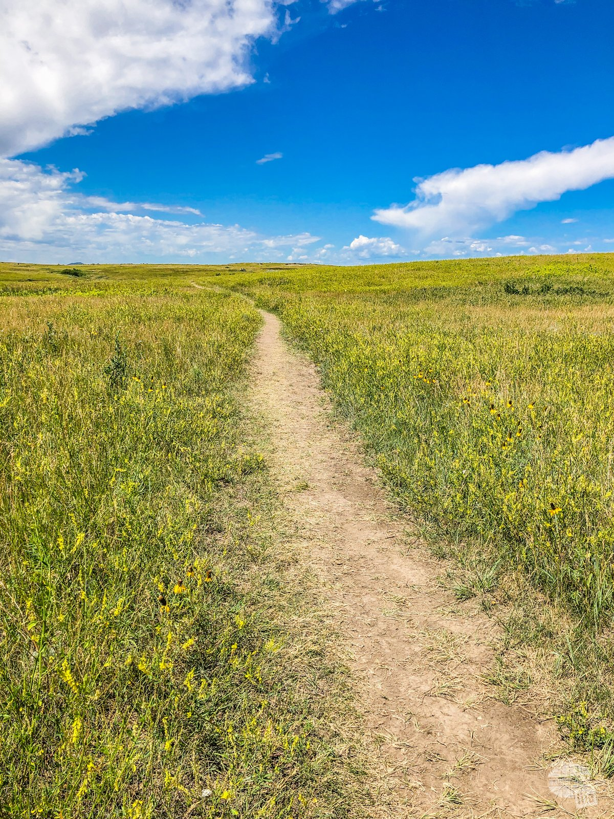 It does not take long getting out on the trails in Theodore Roosevelt National Park before you are surrounded by silence.
