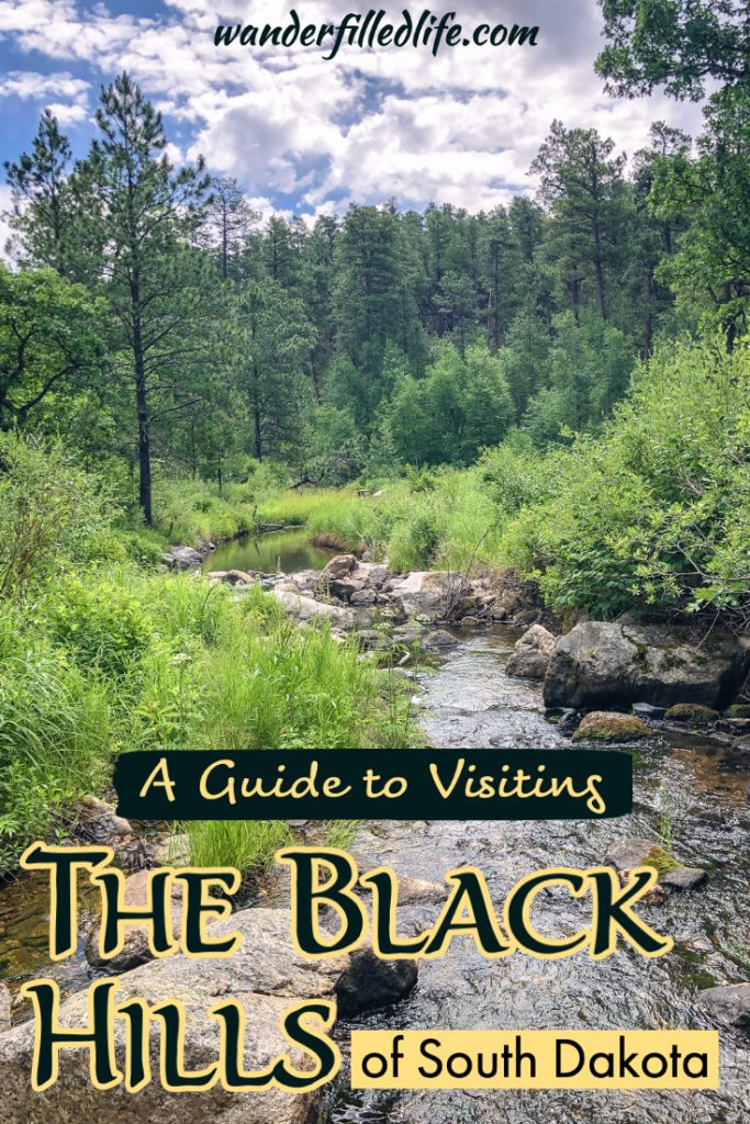 If you're looking for things to do near Mount Rushmore, the Black Hills is full of great parks, museums, wildlife and more. Our guide covers it all!
