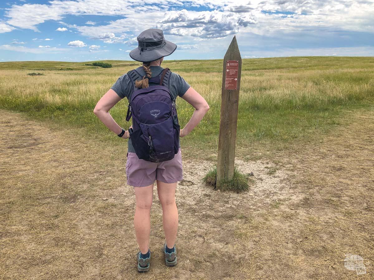 Bonnie checking the trail marker to decide which direction to head first on the Petrified Forest Trail.