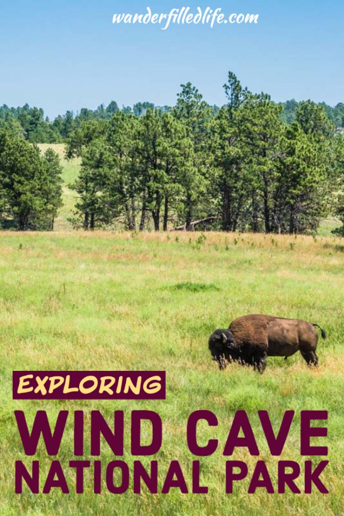 Wind Cave National Park is one of our favorites, with an amazing underground experience plus nearly 34,000 acres above ground to explore.