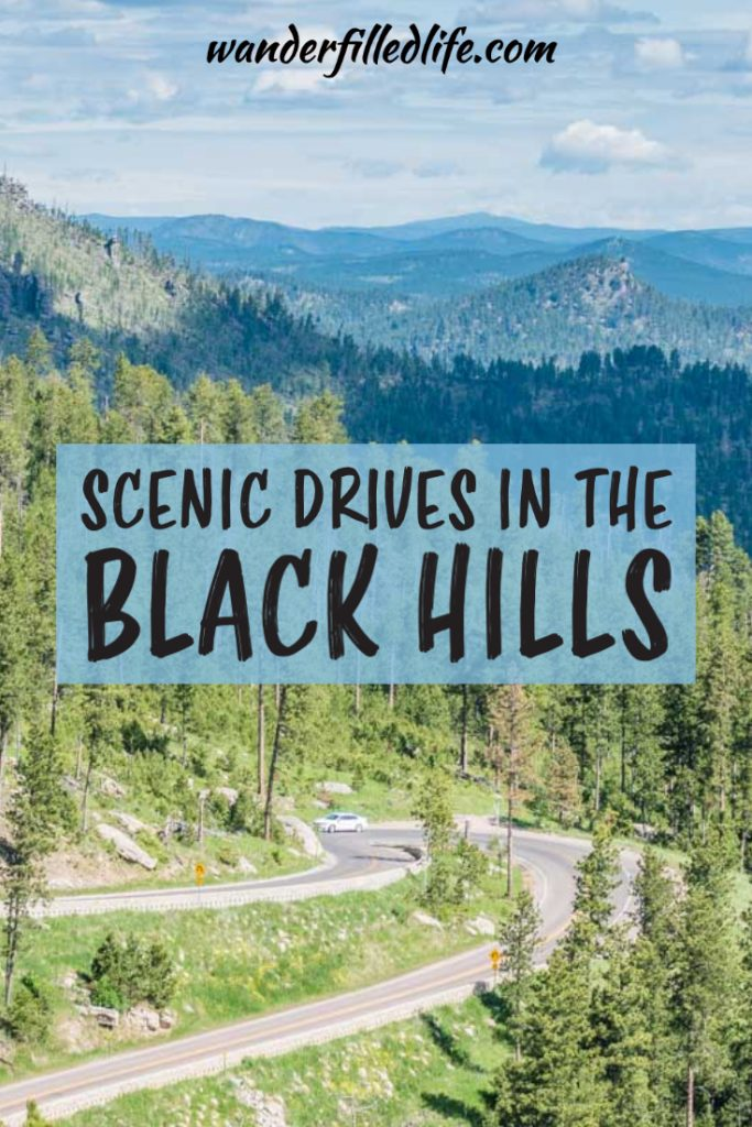 Driving the scenic drives in the Black Hills is one of the best ways to experience the multitude of beauty and wildlife found in this unique place.