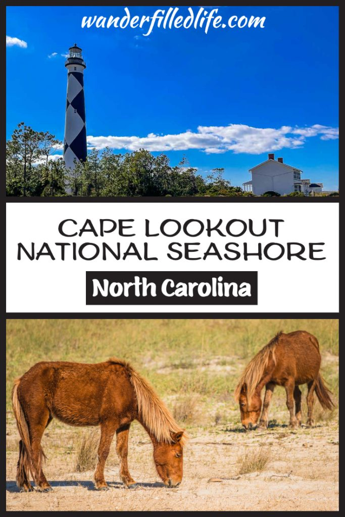 Cape Lookout National Seashore is the perfect place to get away from it all and find solitude on 56 miles of uninhabited beach.