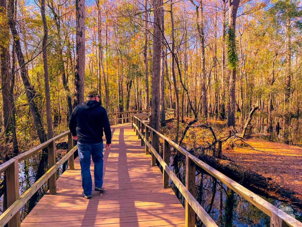 Grant walking across the boardwalk at Moores Creek National Battlefield.