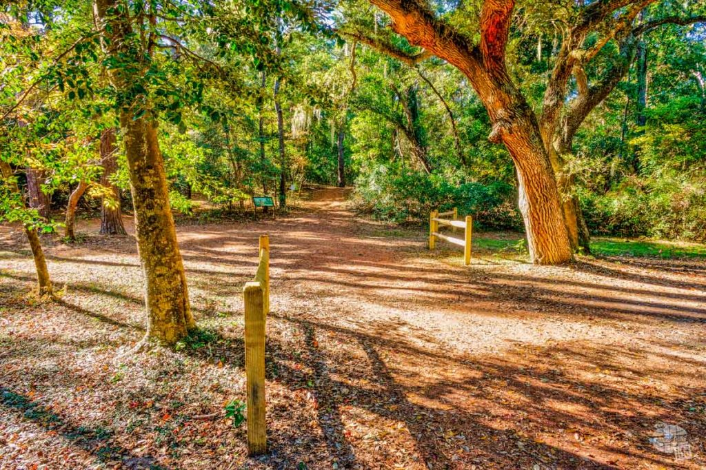The short nature trail at Fort Raleigh is a great way to stretch your legs.