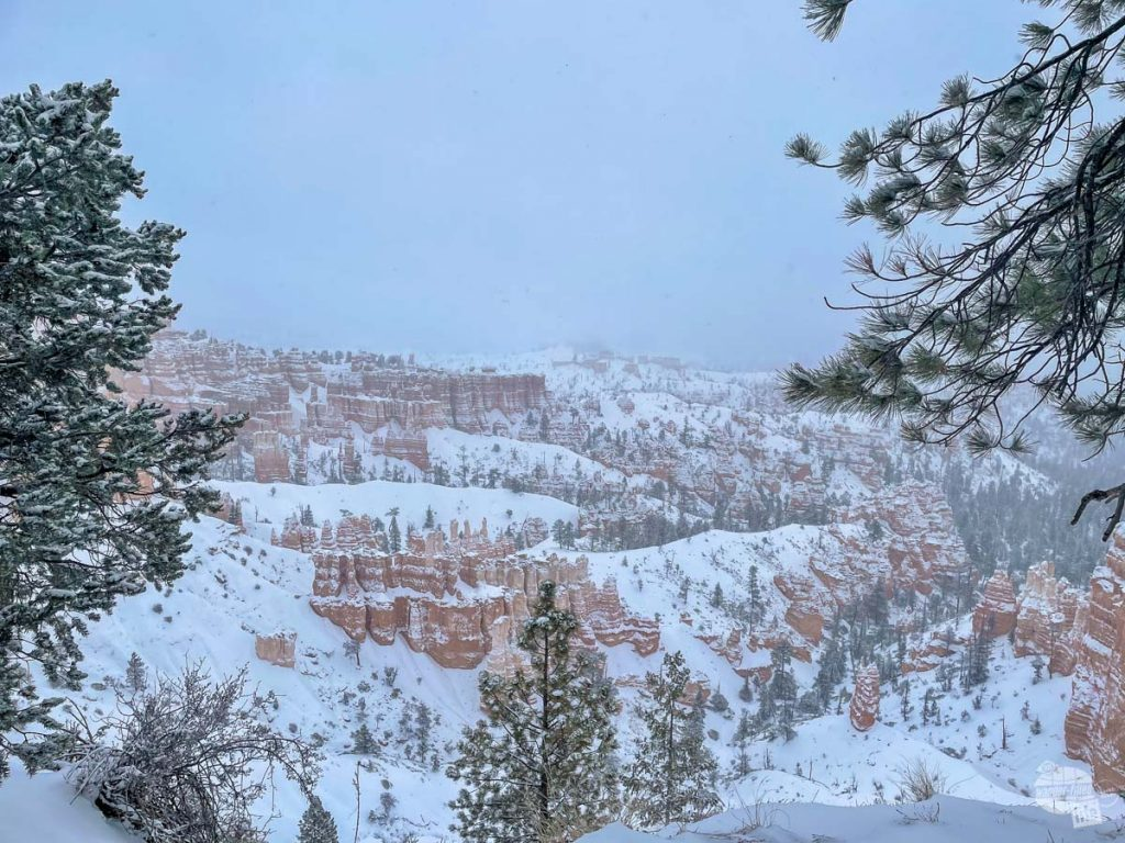Bryce Canyon in December.