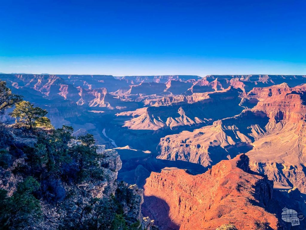 The views of the Grand Canyon are expansive.