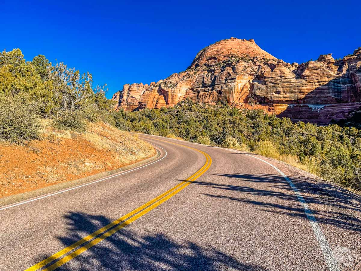 Along Kolob Terrace Road in Zion National Park.