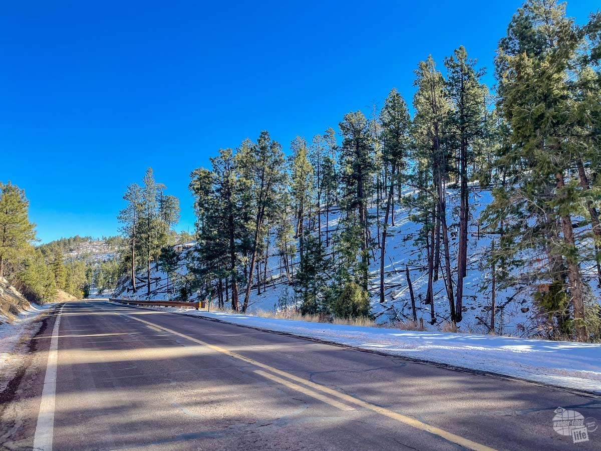 The road passing through snow-covered Kaibab National Forest.