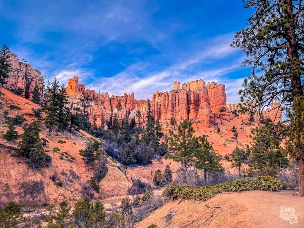 The hoodoos of Bryce Canyon National Park.
