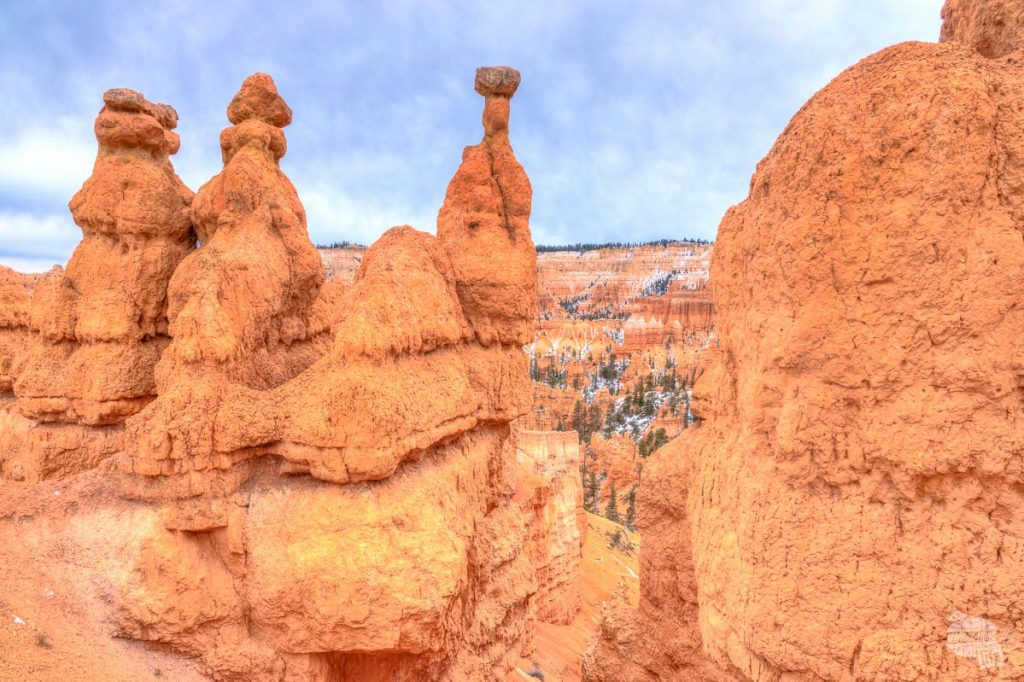 Bryce Canyon Hoodoos.