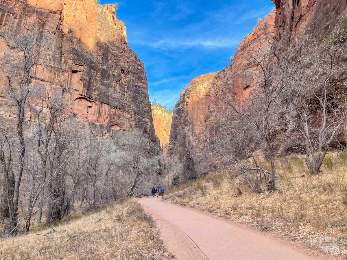The Riverside Trail at Zion National Park.