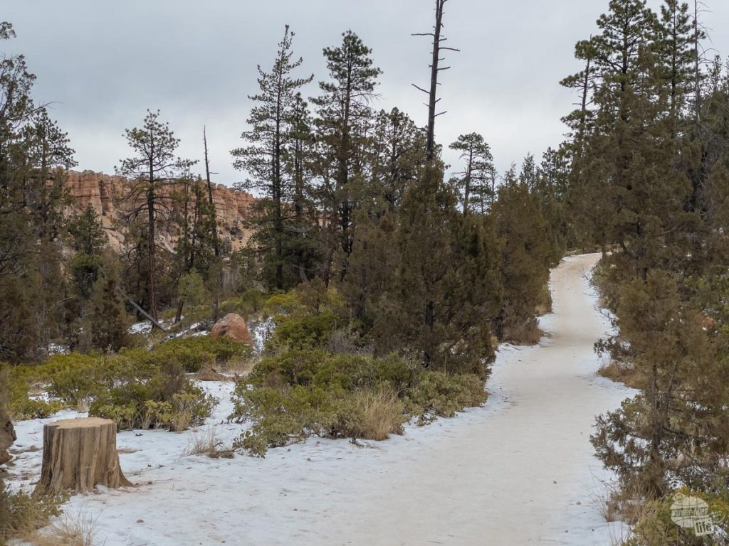Snow-covered trail at Bryce Canyon.