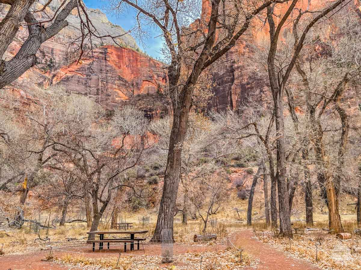 The Grotto at Zion National Park in the winter.