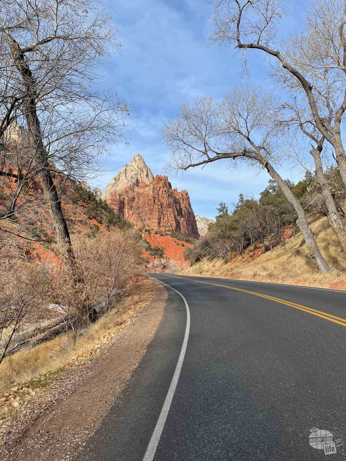 Scenic Drive in Zion Canyon