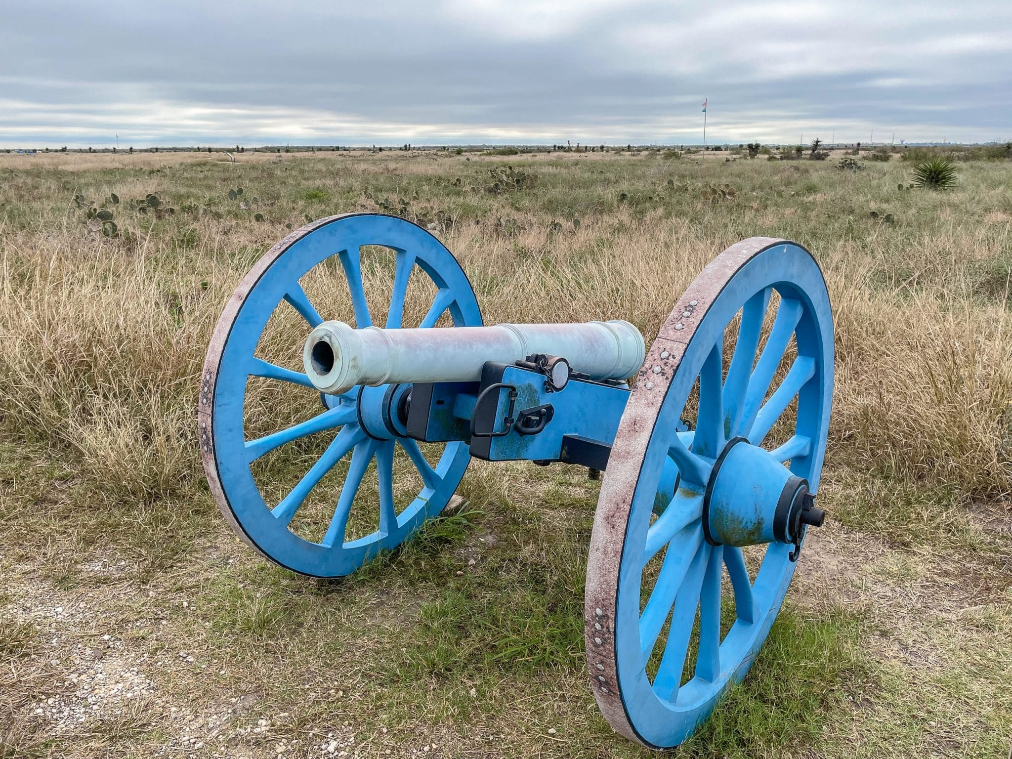 A cannon with a banner behind it marking the Mexican lines at Palo Alto Battlefield