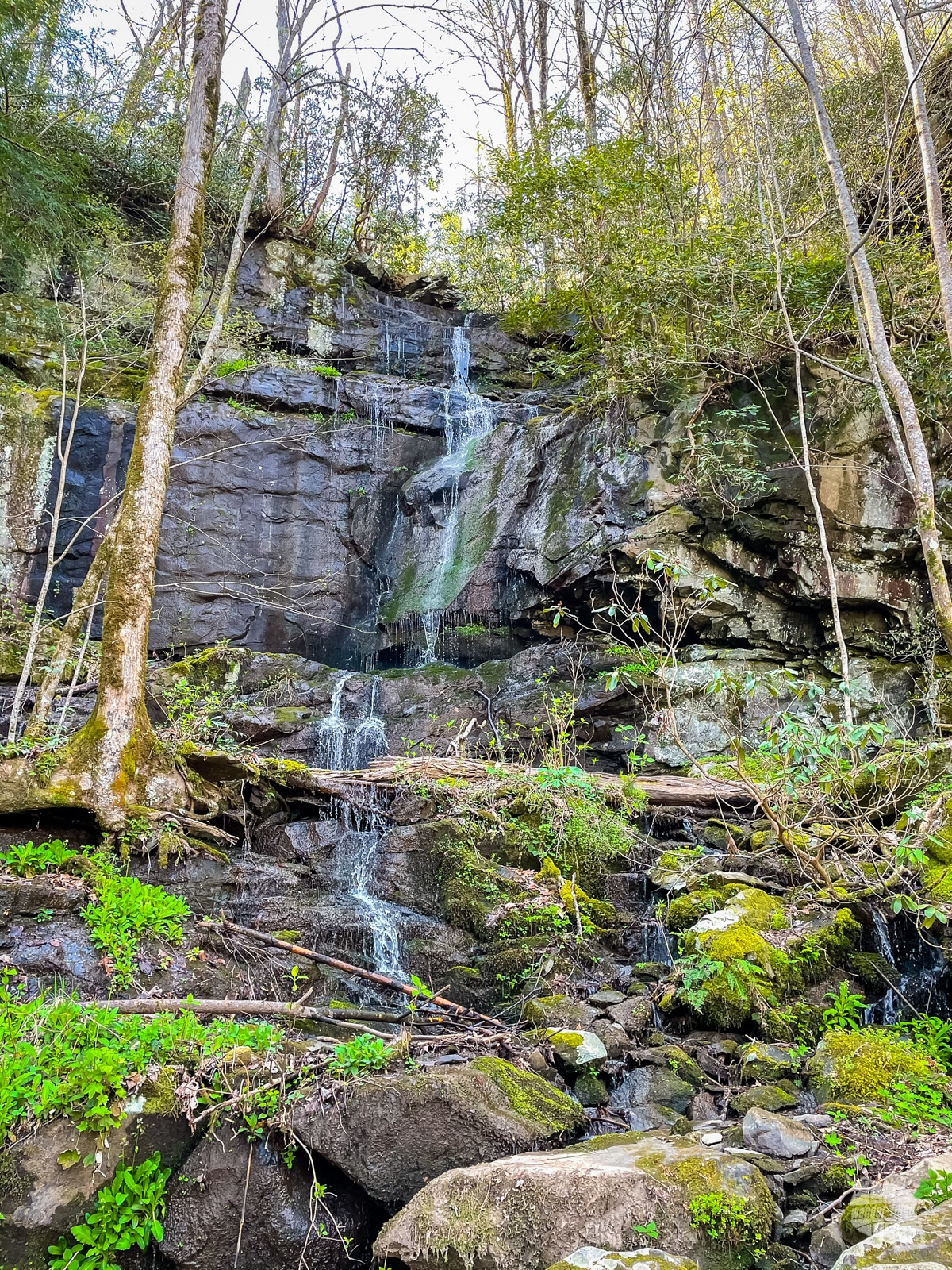 Waterfall along the Roaring Fork Motor Nature Trail.