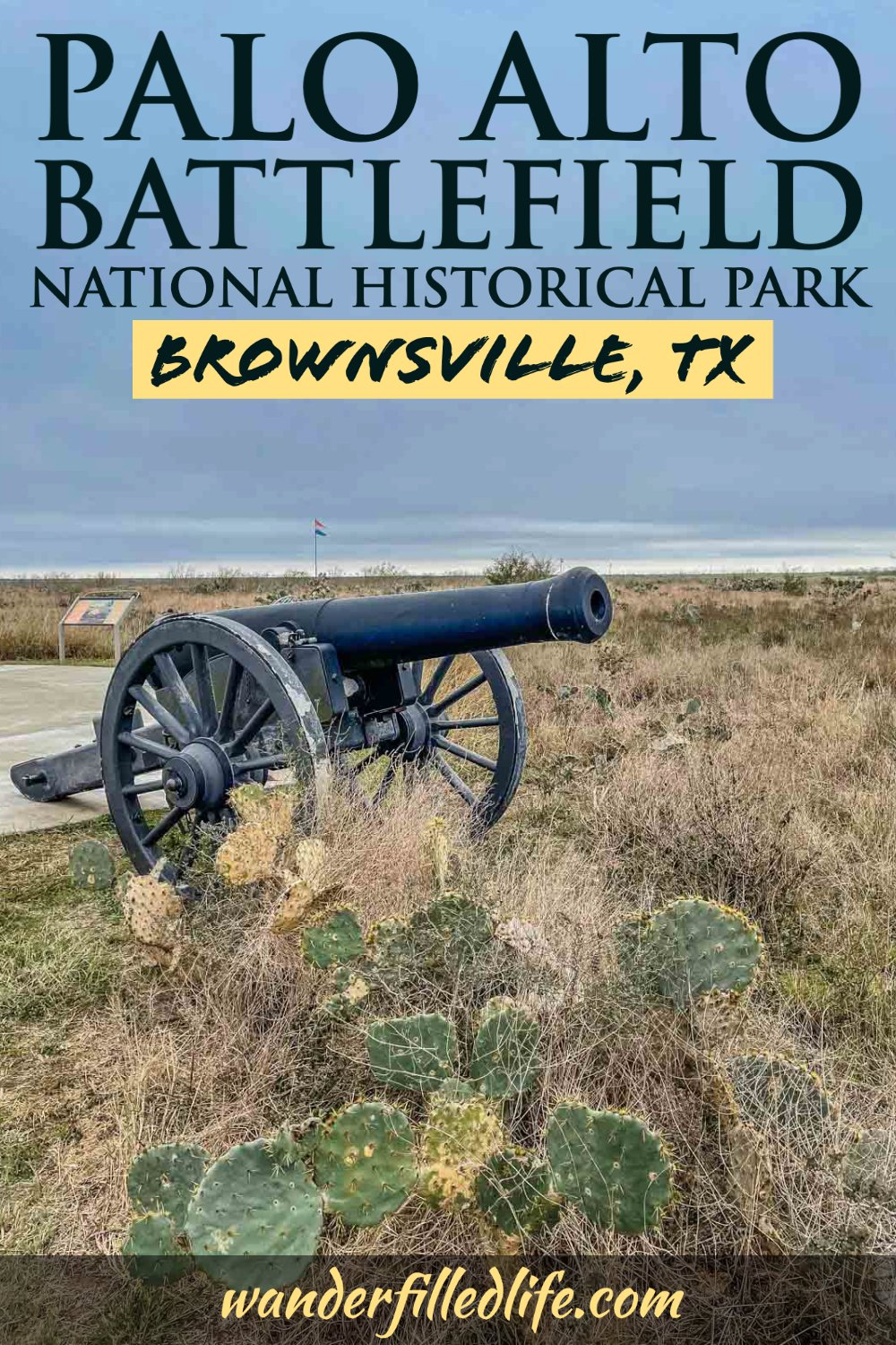 Palo Alto Battlefield National Historical Park offers an in-depth look at the first battles of the Mexican-American War and some unusual wildlife!
