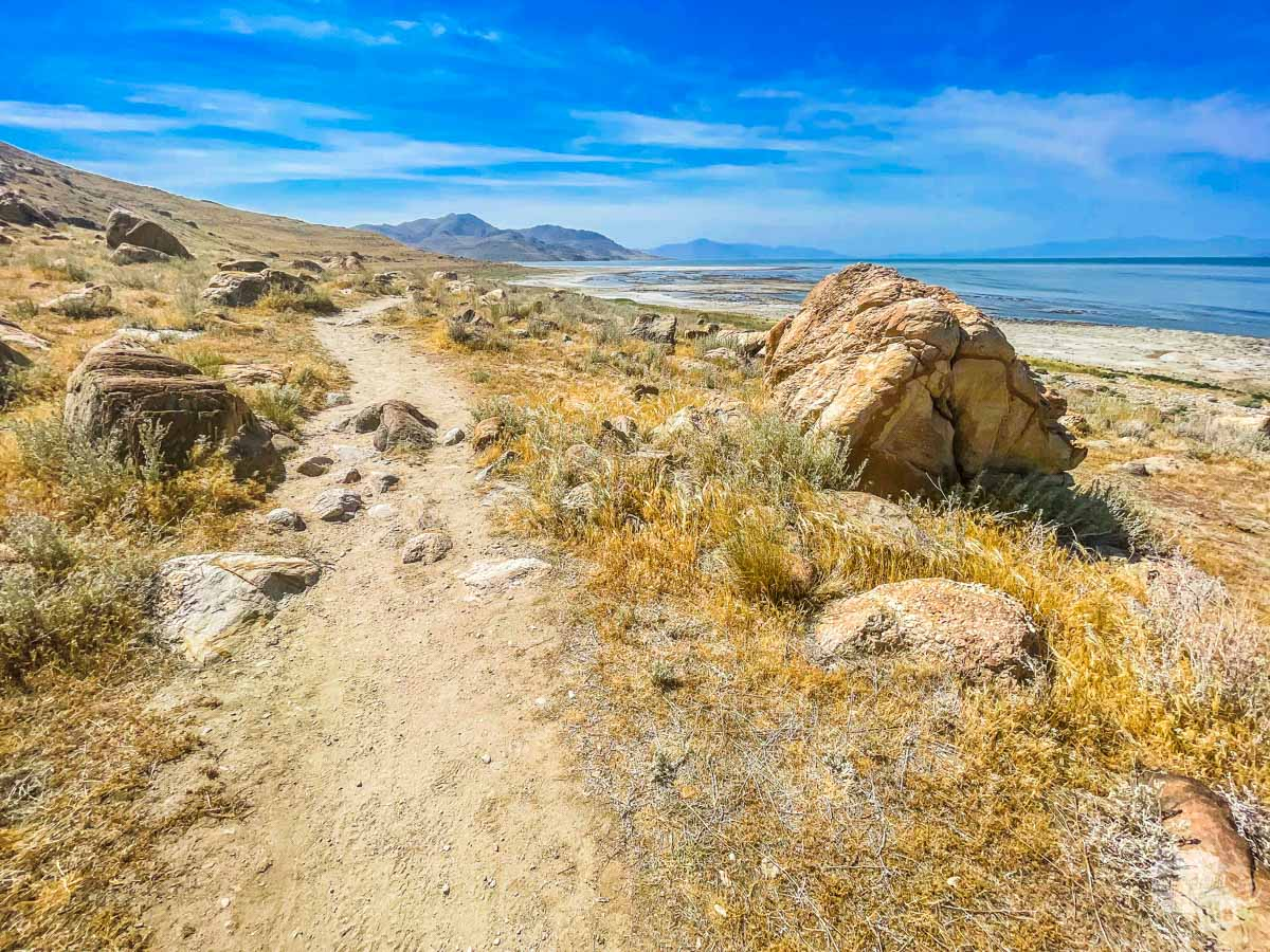 On the Lakeside Trail in Antelope Island State Park.