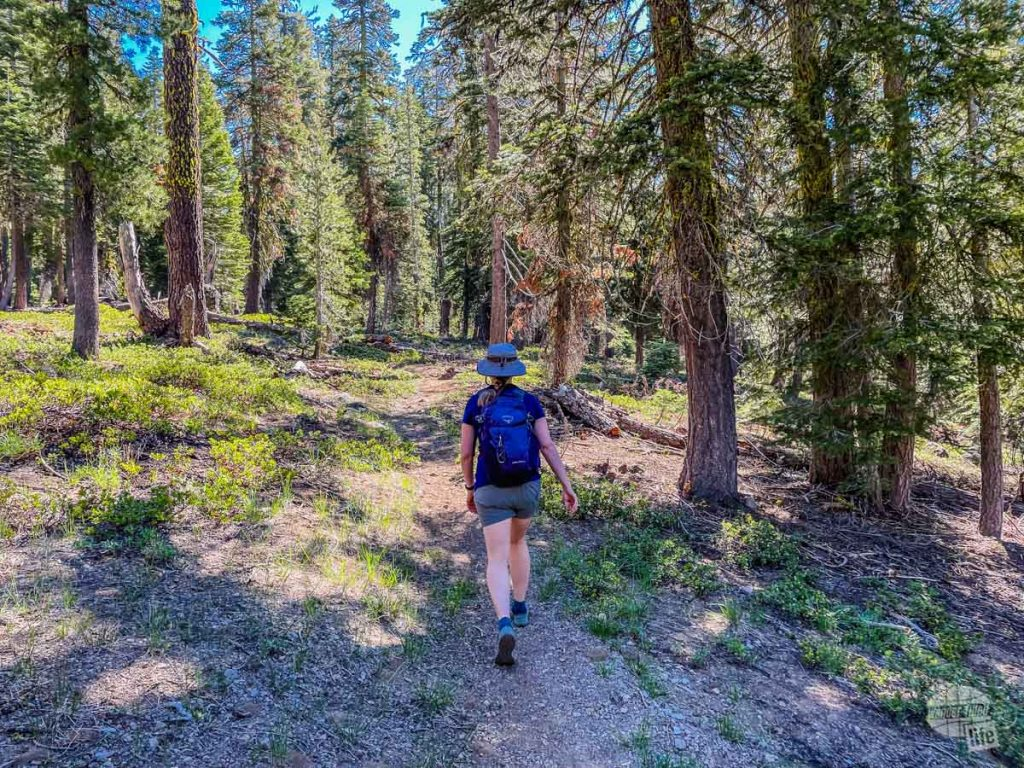 The Inspiration Point Trail in Lassen Volcanic National Park