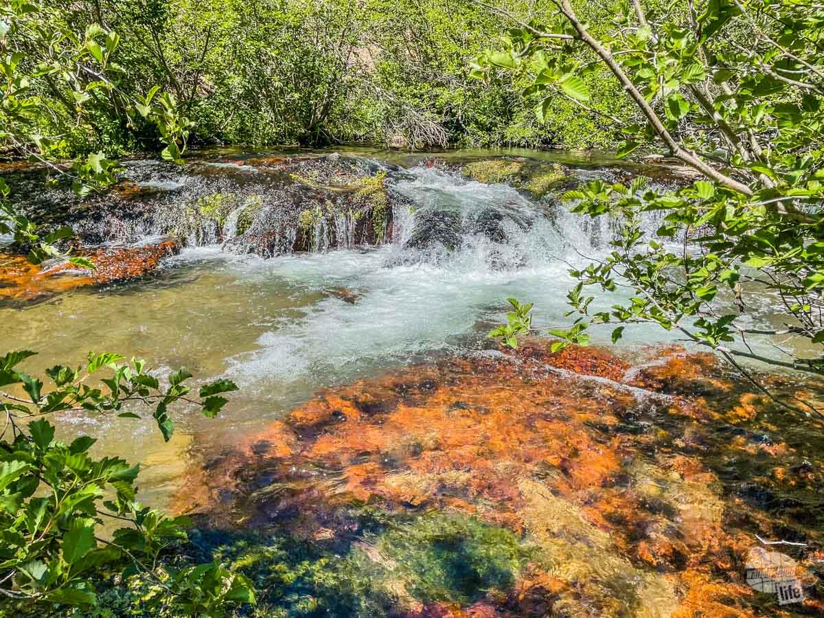 Hot Springs Creek in Warner Valley of Lassen Volcanic National Park.