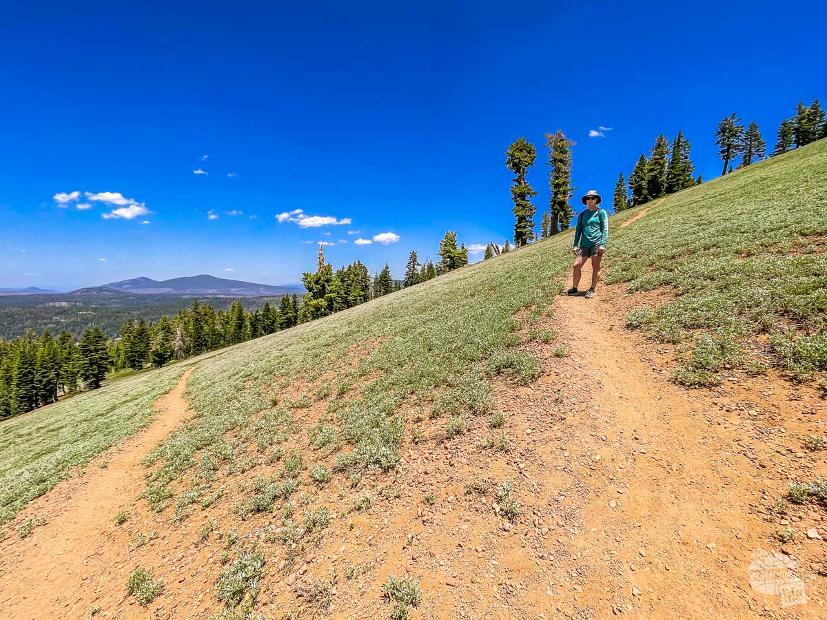 On the Mount Harkness Trail in Lassen Volcanic National Park